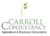 carroll-constultancy