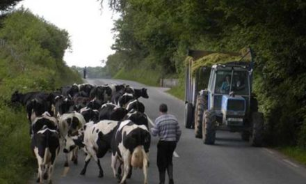 Stress and late diagnosis  the silent killers for farmers