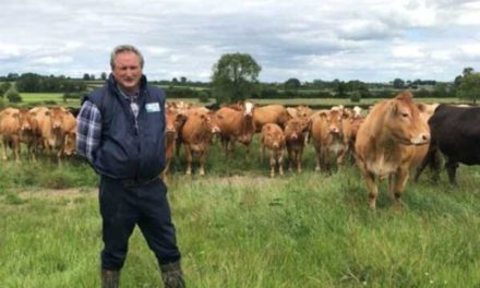 ICSA SLATES BEEF PROCESSORS FOR PRICE CUTS AT TODAY'S BEEF TASKFORCE