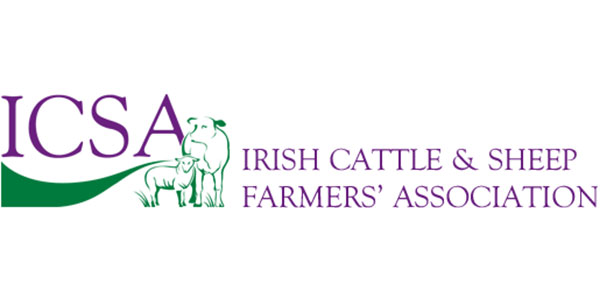 Cattle and Sheep Prices 12 October 2021