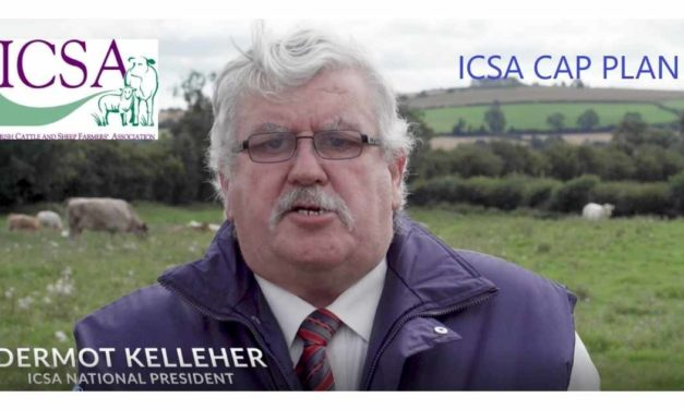 WATCH: ICSA PRESIDENT DERMOT KELLEHER OUTLINES HOW CAP FUNDS CAN BE USED TO BETTER SUPPORT LOW-INCOME SUCKLER, SHEEP & BEEF FARMERS