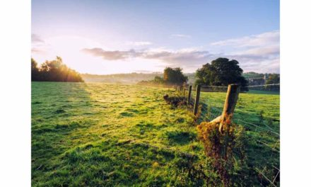 FARMERS' RIGHT TO LIVE VALUATIONS MUST BE PROTECTED