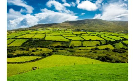 CAP REFORM- FARMERS BEING ASKED TO DO MORE FOR LESS
