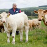MINISTER'S STRATEGY FOR BEEF AND SHEEP SECTORS IN DISARRAY